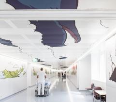 L'Opéra des baleines, 2017, bâtiment Opéra, niveau 0, Hôpital
